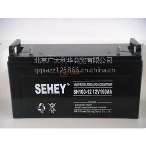 供应西力备用电源蓄电池UPS蓄电池报价