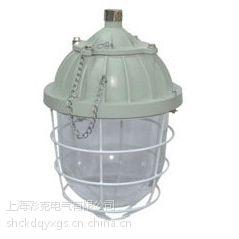 防爆灯具-飞策供应BCD57-e系列防爆防腐灯(n)
