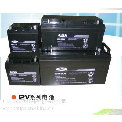 东莞博尔特蓄电池专卖 不间断电源专用博尔 新威UPS蓄电池专卖报价
