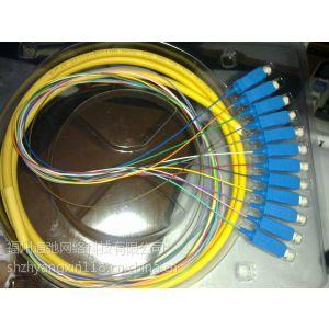 供应供应光纤跳线、尾纤、光纤尾纤、万兆跳线