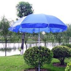 供应金阳光广告太阳伞、高级太阳伞
