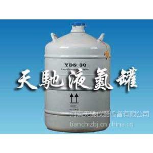供应临颍县液氮罐YDS-30L 液氮罐30升 天驰液氮罐免费送货上门