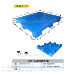 供应合肥塑料托盘 宣城安庆山东塑料托盘15866585112