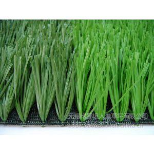 供应厂家直销聚丙烯聚乙烯单丝卷曲运动/休闲仿真造草/足球人造草坪