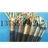 供应耐高温计算机电缆-DJFVP