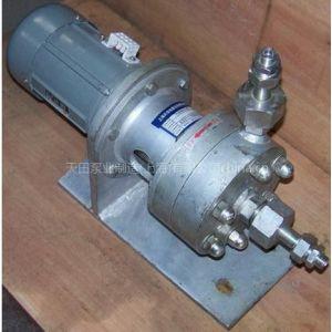 供应高温高压磁力泵