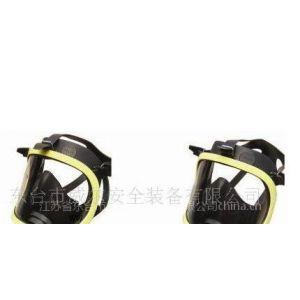 供应空气呼吸器全面罩