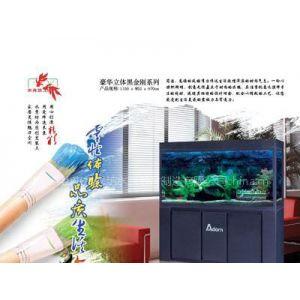供应居家装饰水族箱,上海生态水族箱,湛江热带鱼鱼缸