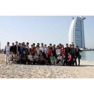 供应2014年迪拜汽配展-汽车零配件和组件、底盘