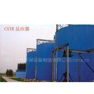 供应UASB CSTR 反应器