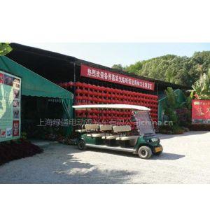 供应上海电瓶观光车