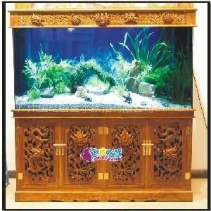 生态鱼缸加盟代理找巨金水族,全国7百多家代理商!