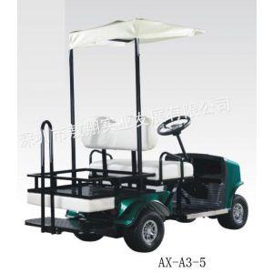 供应老年代步电动车,电动休闲观光车,家用代步电动车实惠款15000元