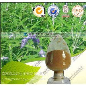 供应厂家标准毛喉鞘蕊花提取物弗斯可林10%-98%
