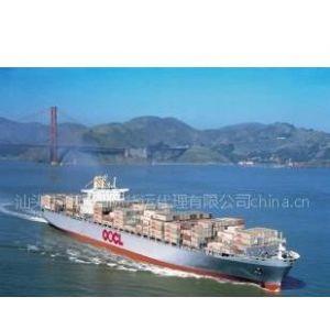 供应汕头外贸海运/汕头国际海运物流