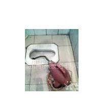 供应海珠龙凤街低价疏通排水管地漏厕所马桶 渠道改换清理沙井化粪池