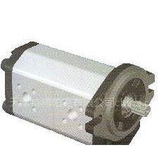供应P97系列双联高压齿轮泵