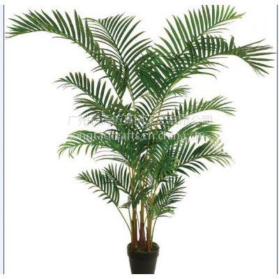 供应人造假散尾葵 环保树 仿真凤尾葵散尾葵 植物盆栽