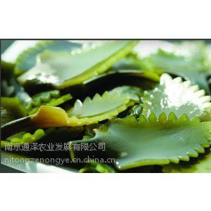 供应厂家直销高含量标准品昆布提取物10%,40%岩藻黄质