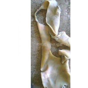 供应皮革下脚料 牛皮 用于明胶原料