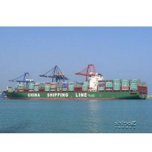 供应温州到至营口海运公司专线服务