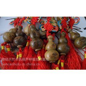 供应北京雕刻葫芦批发/北京小葫芦挂件