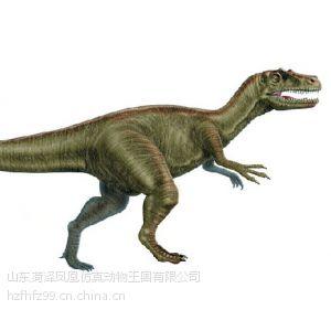 最出名的食肉恐龙非暴龙科恐龙莫属了,像霸王龙,特暴龙,矮暴龙都是