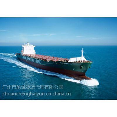 河北黄骅水运到广东清远查询国内海运集装箱运输