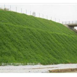供应客土喷播裸土复绿施工