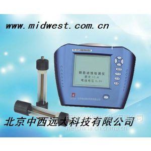 供应库号:M176519             钢筋锈蚀检测仪