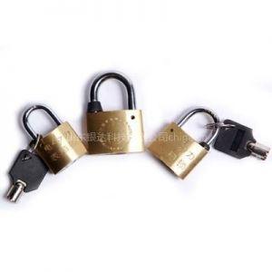供应电表箱防盗锁
