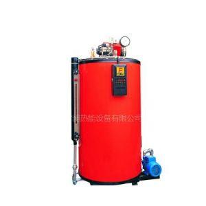 供应30Kg/h蒸发量燃油蒸汽发生器
