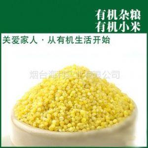 供应有机小米健康营养绿色纯天然食品