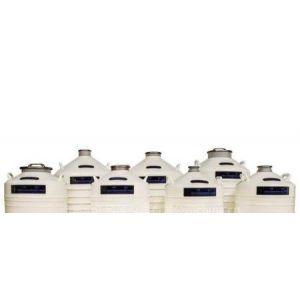 供应南京承正液氮罐YDS-100B-200