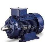 供应意大利MarelliMotori低压异步发电机