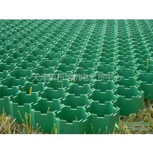 供应草坪植草格