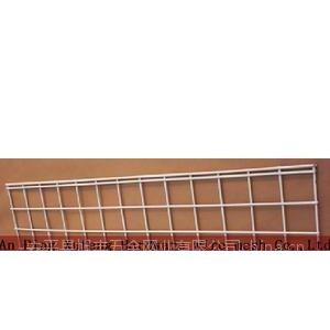 专业生产各类规格的不锈钢网片