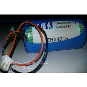 供应原装HPST MYJ ER34615 3.6v 流量计电池 D型 1号 LS33600 带插头