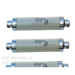 供应支持混批 XRNT-10 XRNT高压熔断器