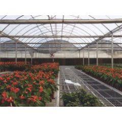 供应的花卉大棚—青州市昊阳温室工程有限公司