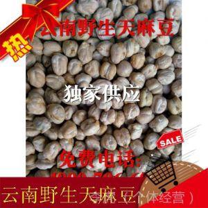 供应2014跑江湖摆地摊云南野生天麻豆 展销会夜市菜市热销产品