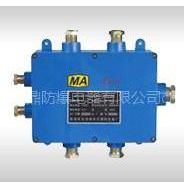 供应JHH-6,JHH-6(A本安接线盒