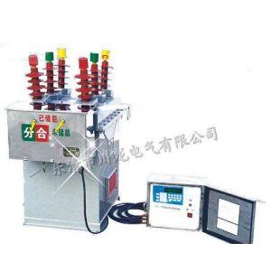 供应ZW8M-12/630-20户外高压永磁真空断路器