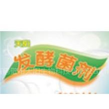 供应生物有机肥发酵菌剂