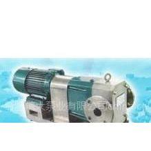 供应GN6.0/1.0耐腐蚀转子泵