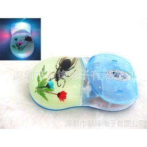供应琥珀光电鼠标 透明树脂鼠标 昆虫标本鼠标 贝壳 海洋生物标本鼠标