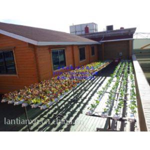供应订制个性化无土栽培家庭菜园阳台种菜