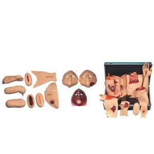 供应创伤护理评估模块 医学教学模型 急救模型 心肺复苏模拟人
