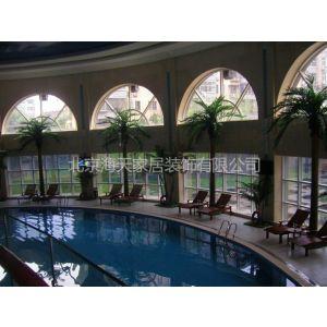 供应北京仿真椰子树票房定做玻璃钢椰子树13661035480