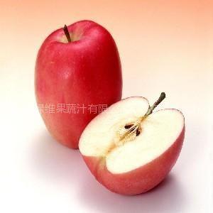 供应出口一级浓缩苹果汁新鲜红富士苹果浓缩汁